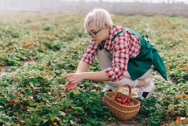 Фермер собирает урожай