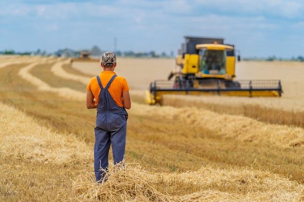 農夫は後ろから見ているコンバインの作業を見ています。