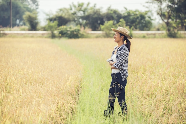The farmer is in the rice field and takes care of her rice.