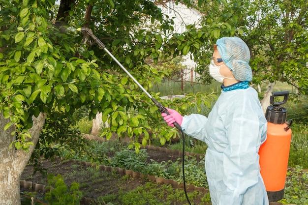 농부는 곰팡이 질병이나 해충에서 사과 나무에 압력 분무기와 화학 물질을 뿌리고 있습니다