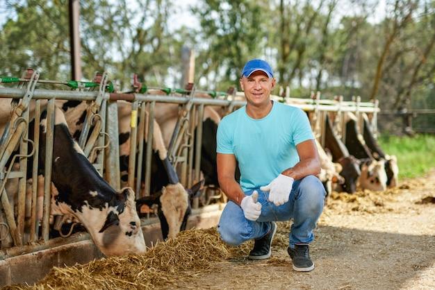 농부는 젖소 농장에서 일하고 있습니다.