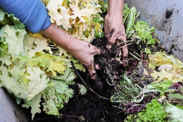 Фермер мужчина держит компост с червями