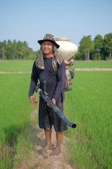 Фермер в шляпе и разбрасывателе удобрений на зеленой рисовой ферме с солнечным светом.