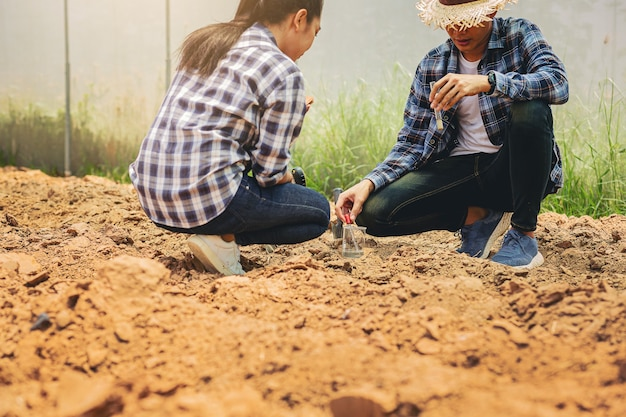 Farmer owner and agronomist were consulted scholars about how to improve soil quality