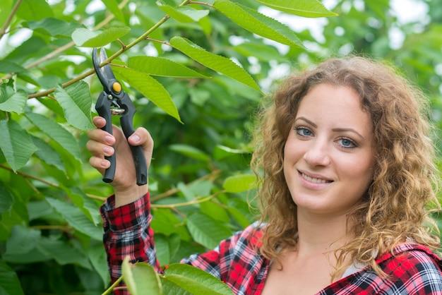 Agricoltore la potatura dei rami degli alberi da frutto nel frutteto