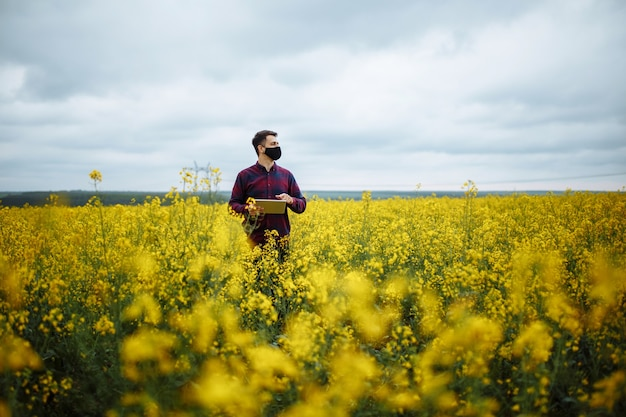 タブレットを持って菜種咲く植物に農民の手と畑の花を調べる