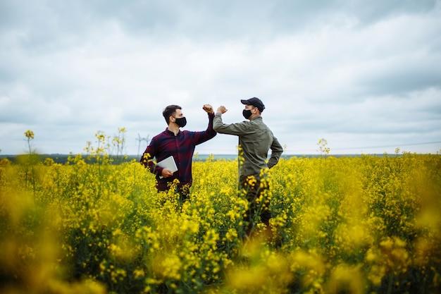 農夫がナタネの咲く植物を肘と一緒に手に取り、畑にタブレットを置く