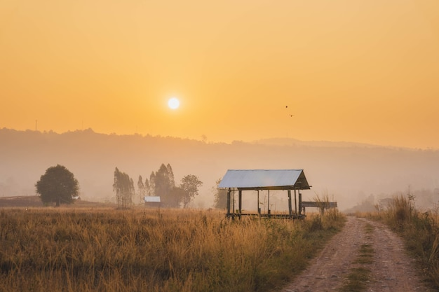 田んぼの農家小屋日の出の田舎道沿い。