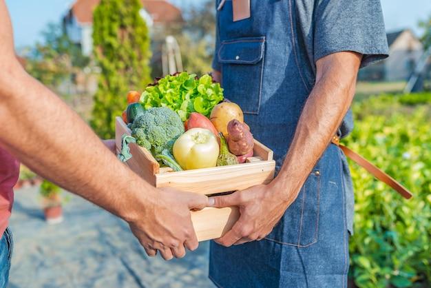 화창한 날에 그의 유기 농산물을 판매하는 농부
