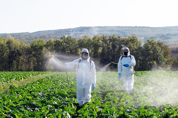 Farmer spraying pesticide field mask harvest protective chemical  two