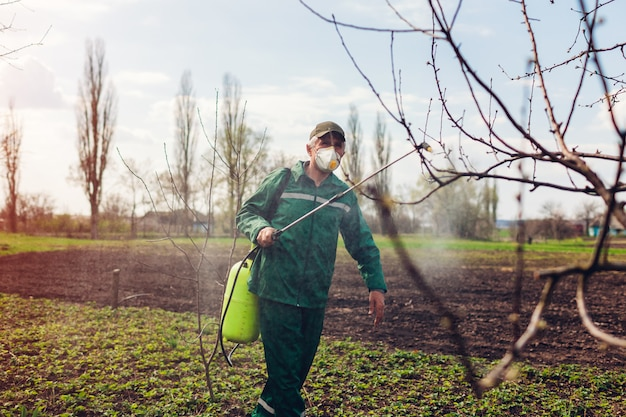 Farmer spraying tree with manual pesticide sprayer against insects in autumn garden. agriculture and gardening