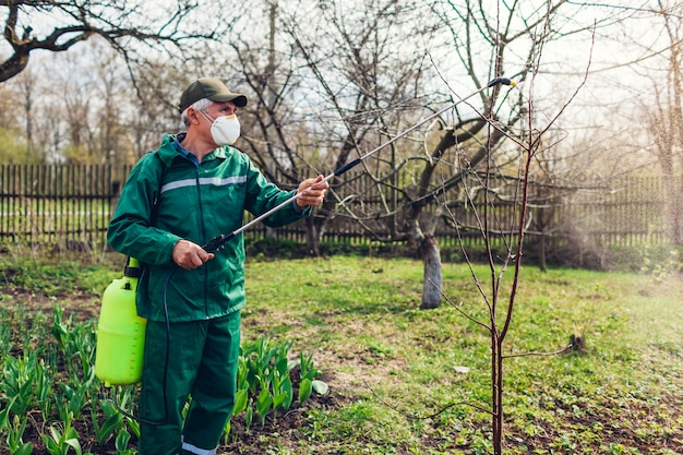 Farmer spraying tree with manual pesticide sprayer against insects in spring garden