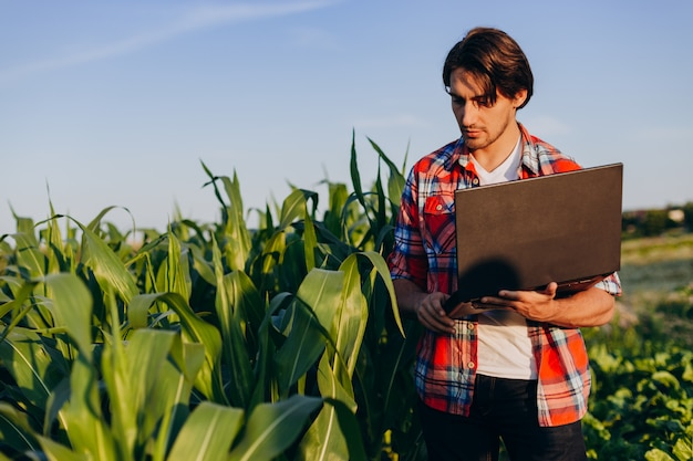 Farmer standing in a field holding open laptop and taking a control of yield