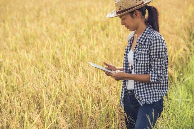 농부는 태블릿 쌀 필드에 서.