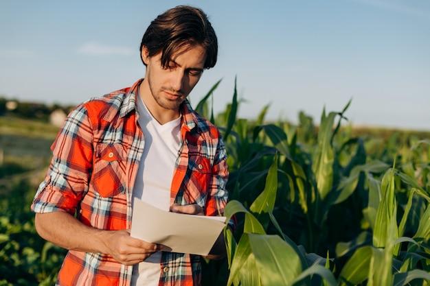 トウモロコシ畑に立って作物を調べている農民。市松模様のシャツを着た若い農学者が書類を勉強しています。