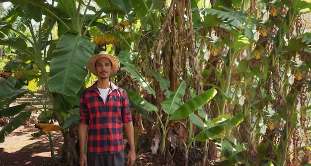 Фермер, стоящий перед плантацией банановых деревьев в солнечный день. портрет фермера на приусадебном участке.