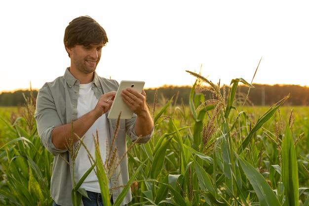 Фермер изучает качество производства кукурузы в сельском хозяйстве и использует таблетку.