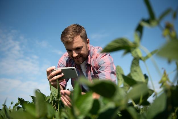 농부가 콩 농장 사진을 찍고 있습니다. 품질 관리. 농업 경제학자의 작품. 브라질 농장.