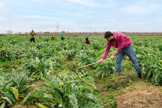 경작지에서 토양을 경작하는 농부