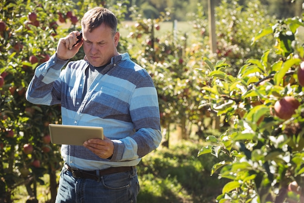 Farmer using digital tablet while talking on mobile phone in apple orchard