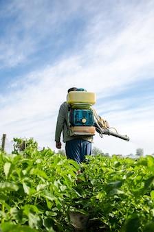 분무기가 있는 농부는 곤충으로부터 경작된 식물을 보호하는 농장을 걷습니다.