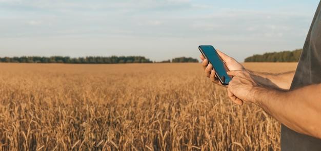 収穫農業中に麦畑を背景にスマートフォンを手にした農夫...