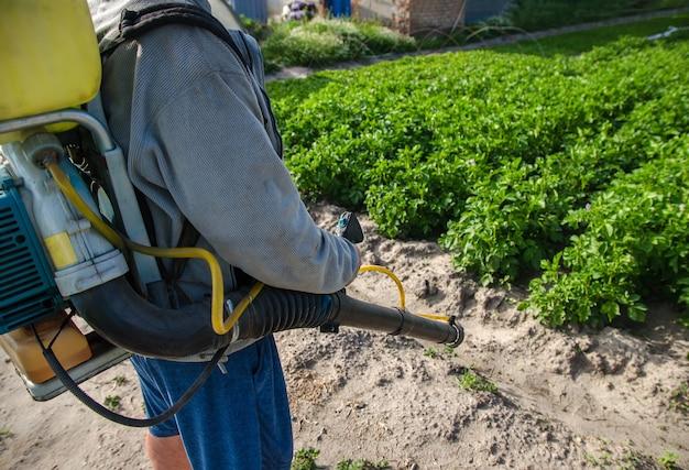 감자 농장 배경 살균제와 살충제에 스프레이 기계를 가진 농부
