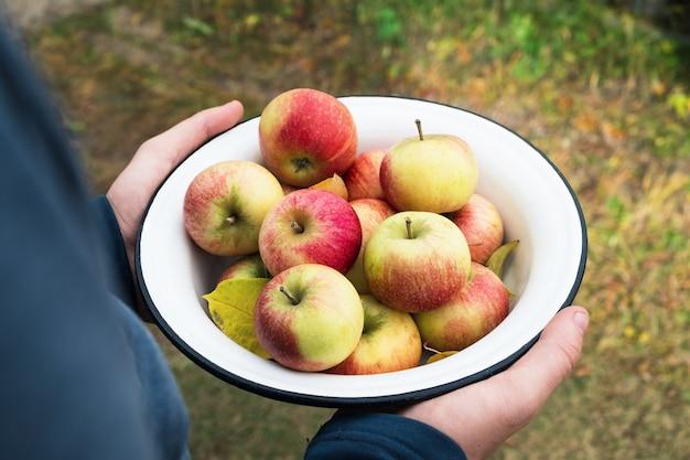 ボウルに新鮮なリンゴを持っている農夫