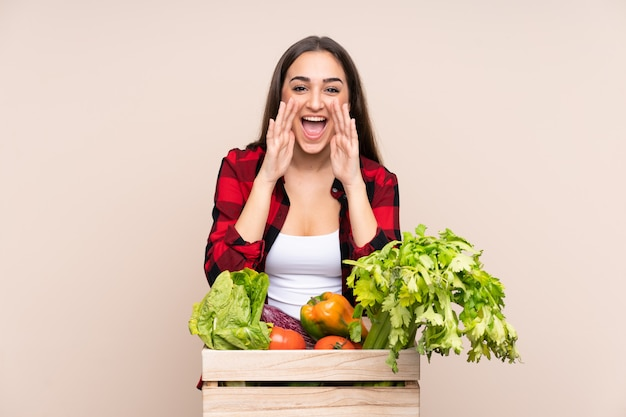 Фермер со свежесобранными овощами в коробке на бежевой стене, кричащей с широко открытым ртом