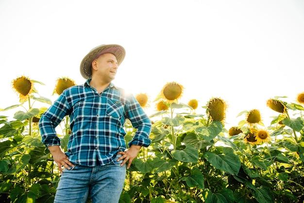 晴れた夏の日にひまわり畑の男で腰に手を、頭に帽子をかぶった農夫
