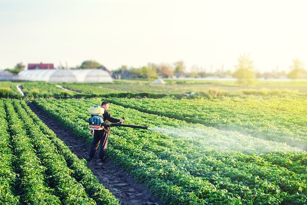 A farmer with a mist sprayer blower processes the potato plantation from pests and fungus infection