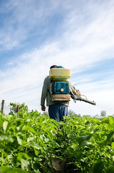 Farmer with a mist sprayer walks through farm field protection of cultivated plants from insects