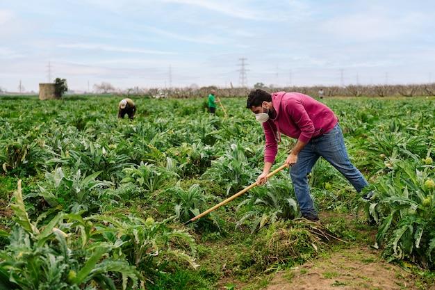 토양을 경작하는 보호 마스크를 가진 농부