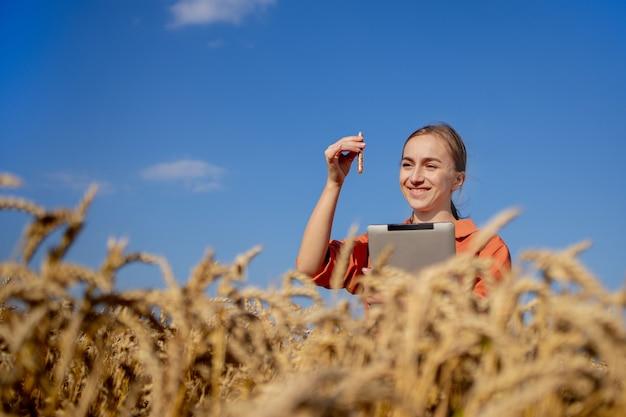 Фермер с таблеткой и пробиркой исследует растение в пшеничном поле