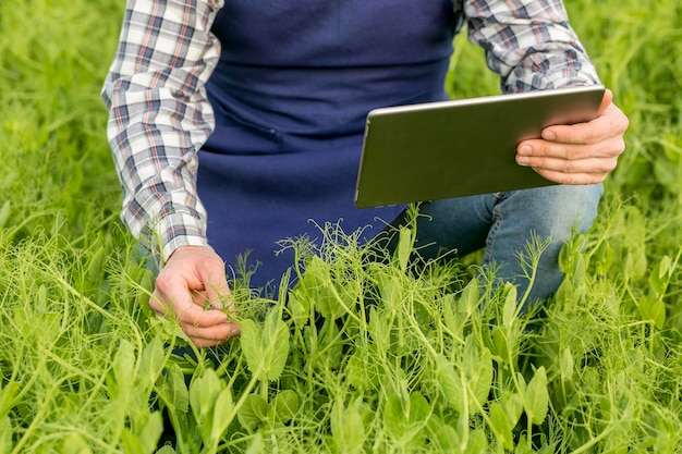 Farmer with tablet close-up