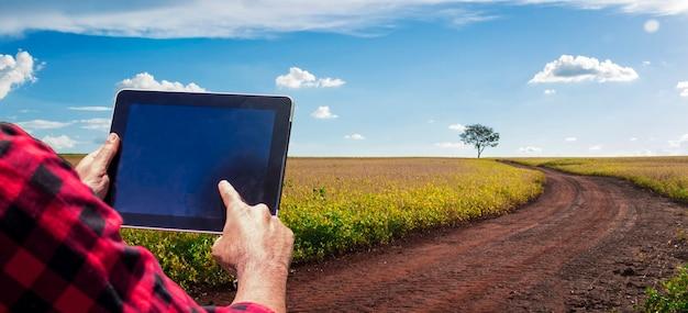 日没時の大豆プランテーションフィールドの田園地帯にタブレットコンピューターを持っている農夫
