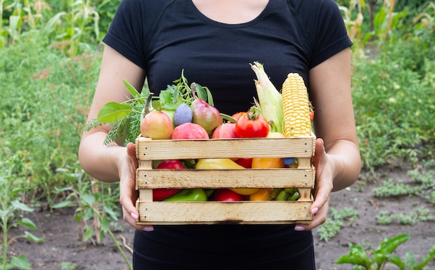 Farmer woman holding wooden box full of vegetables and fruits from her organic eco garden. harvesting homegrown produce concept