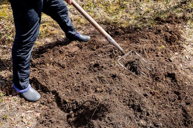 春に庭で働いている農夫。草原の有機肥料、採掘と植栽のための庭の準備。農業、農業。