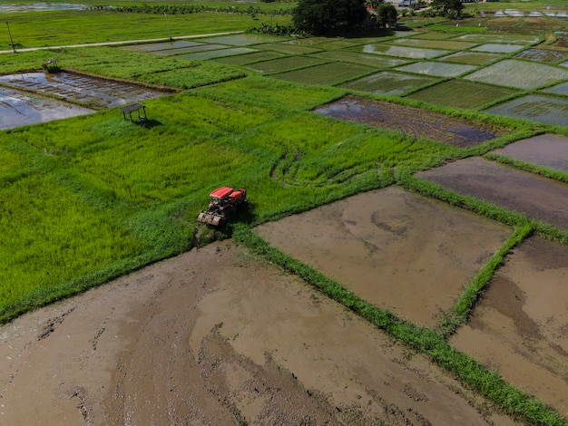 Farmer working in rice plantation using tiller tractor. aerial view paddy farmer prepares the land planting rice. farmland with agricultural crops in rural areas lampang thailand.