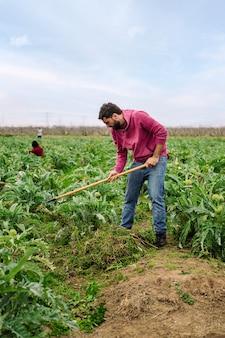 농장 필드에 땅을 일하는 농부