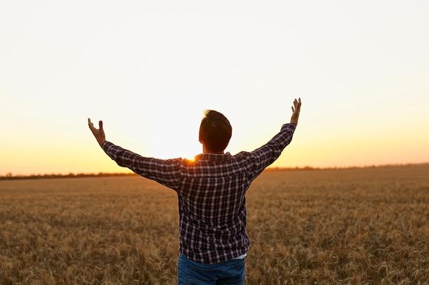 農夫、日没を楽しみにして麦畑に立っている若いハンサムな農夫は、太陽に向かって手を上げた