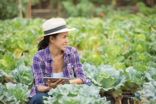 농부들은 채소 농장에서 일하고 있습니다. 디지털 태블릿을 사용하여 야채 식물 검사