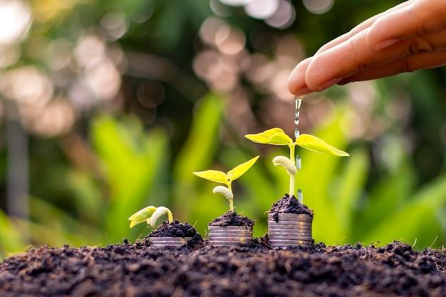 Рука фермера поливает растущие растения на монетах на фоне размытой зеленой концепции финансирования природы