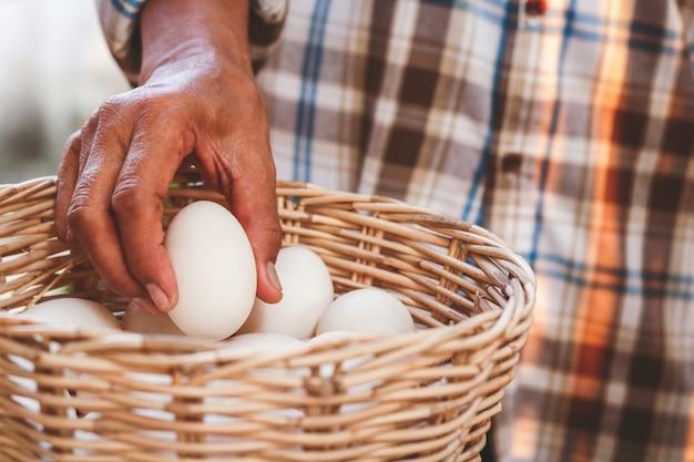 農家ではカモの卵をかごにたくさん入れて食べています。