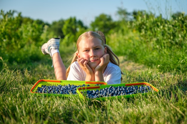 Farmers little daughter picks blueberries in a basket and rests on the grass