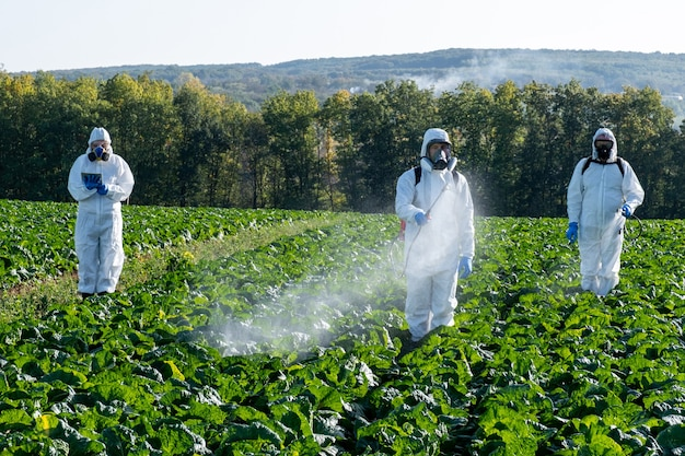 Farmers spraying pesticide field mask harvest protective chemical