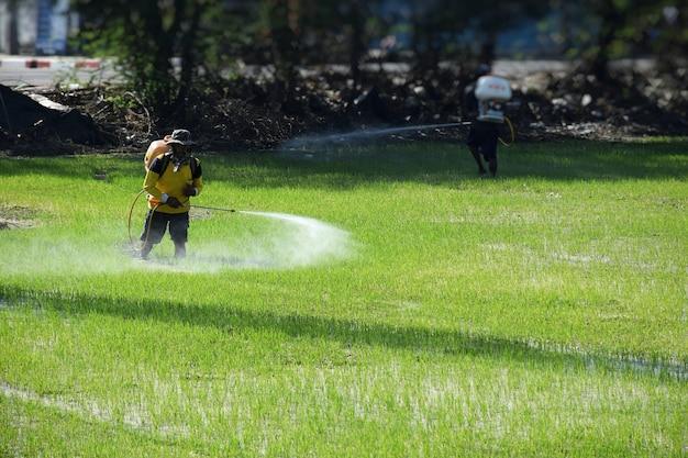 Farmers were fertilizing.infuse weed sprayer