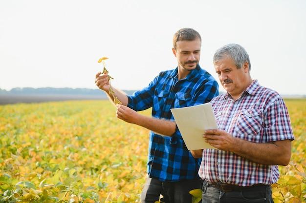작은 콩 모종을 들고 농장에서 일하는 농부들.