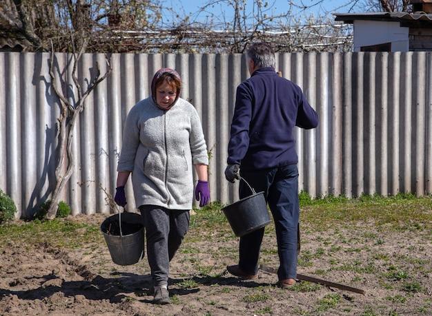 Farming, gardening, agriculture happy senior couple working in garden at summer farm