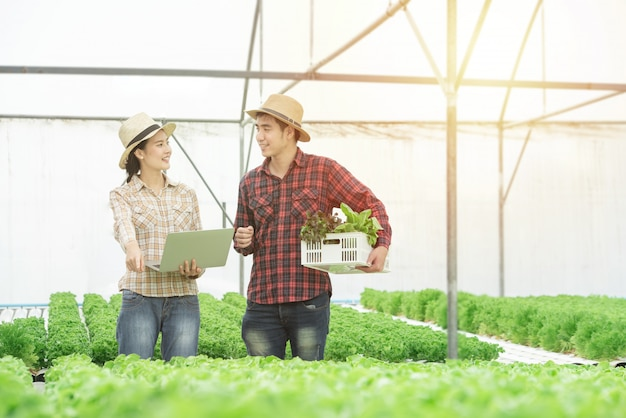 Farming, gardening, agriculture, harvesting and people concept - young asian couple with box of green oak and tablet pc computer at farm greenhouse hydroponic organic.